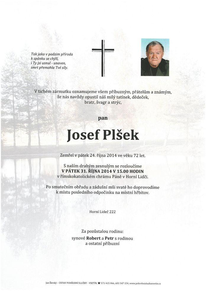 Josef Plšek