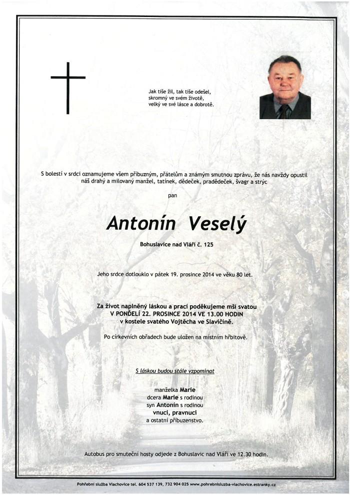 Antonín Veselý