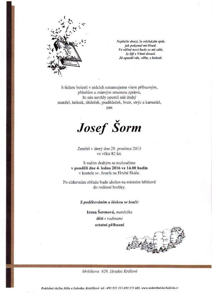 Josef Šorm