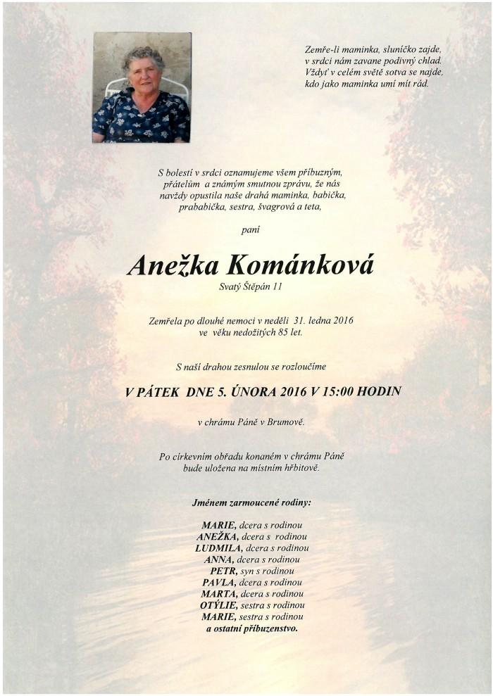 Anežka Kománková