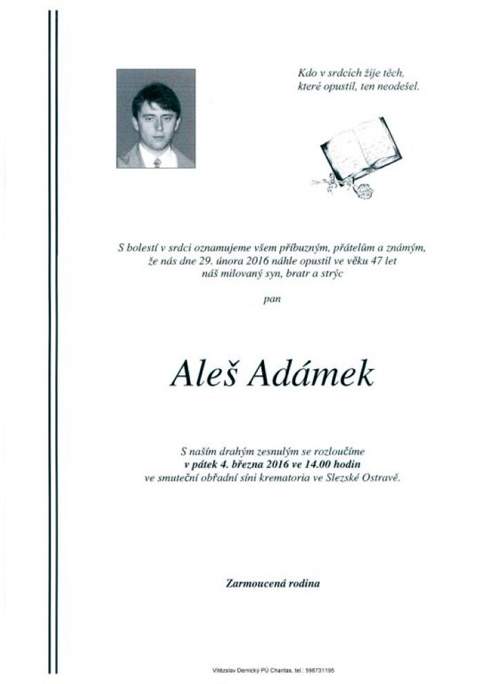 Aleš Adámek