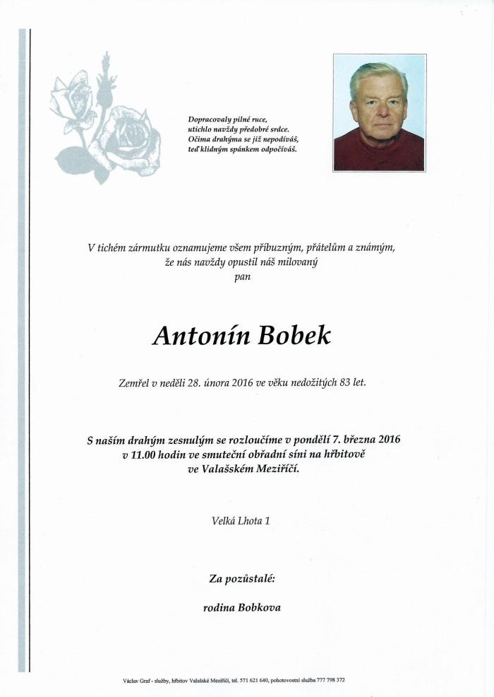 Antonín Bobek