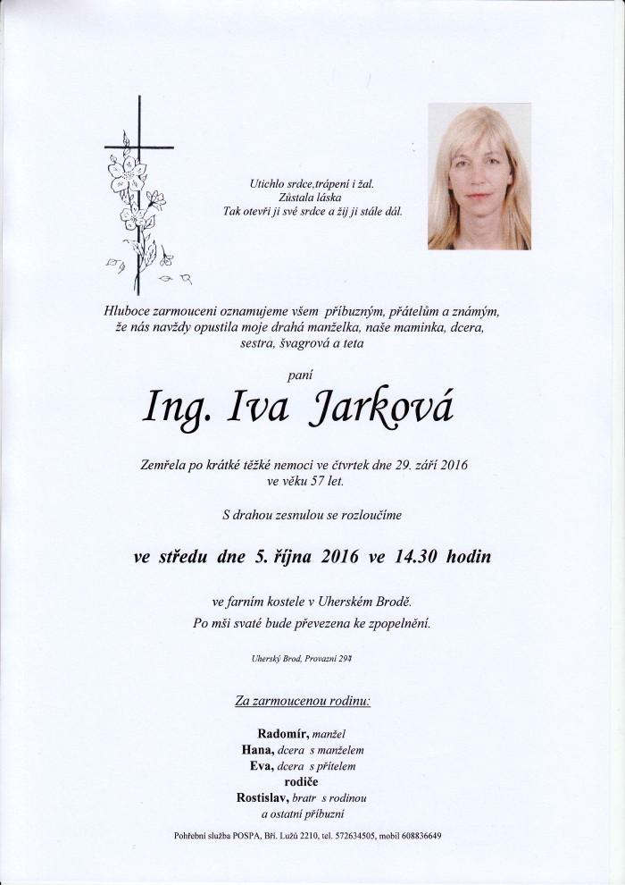 Ing. Iva Jarková