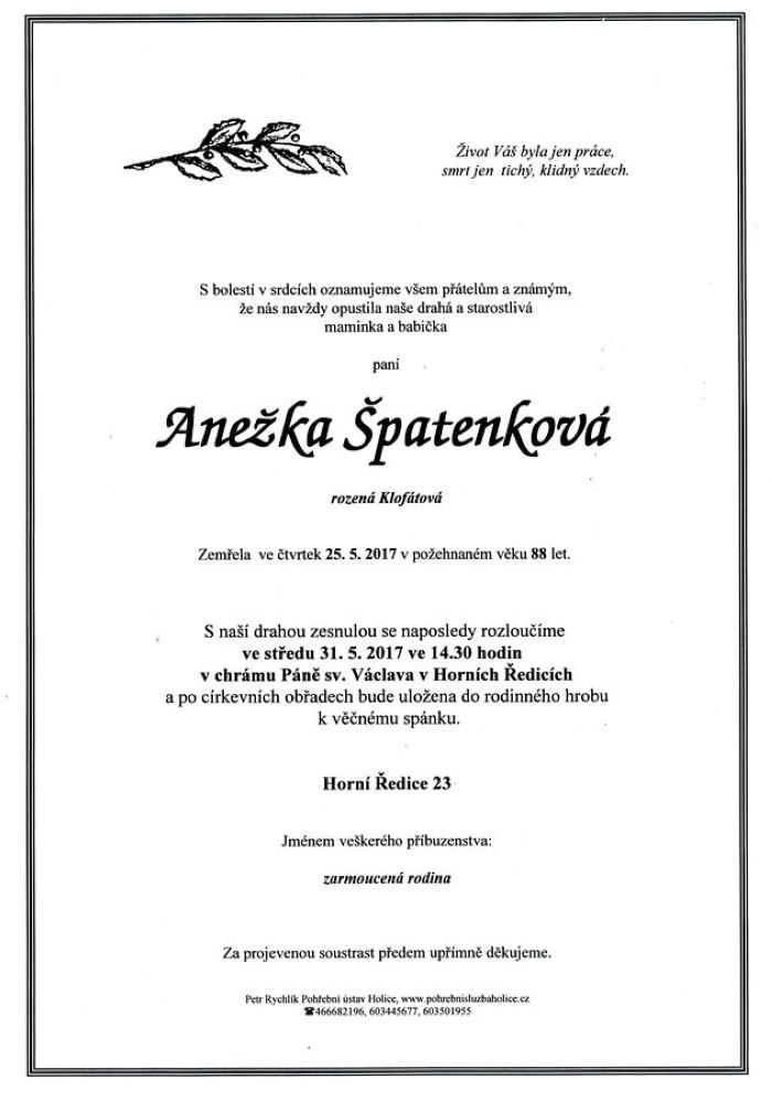 Anežka Špatenková