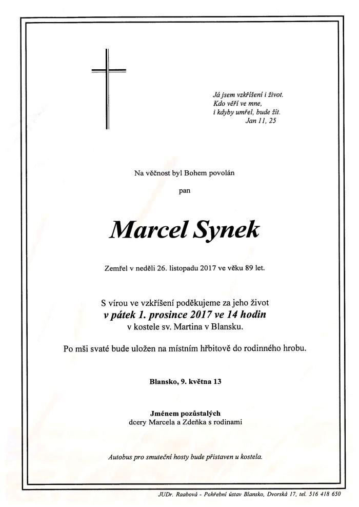 Marcel Synek