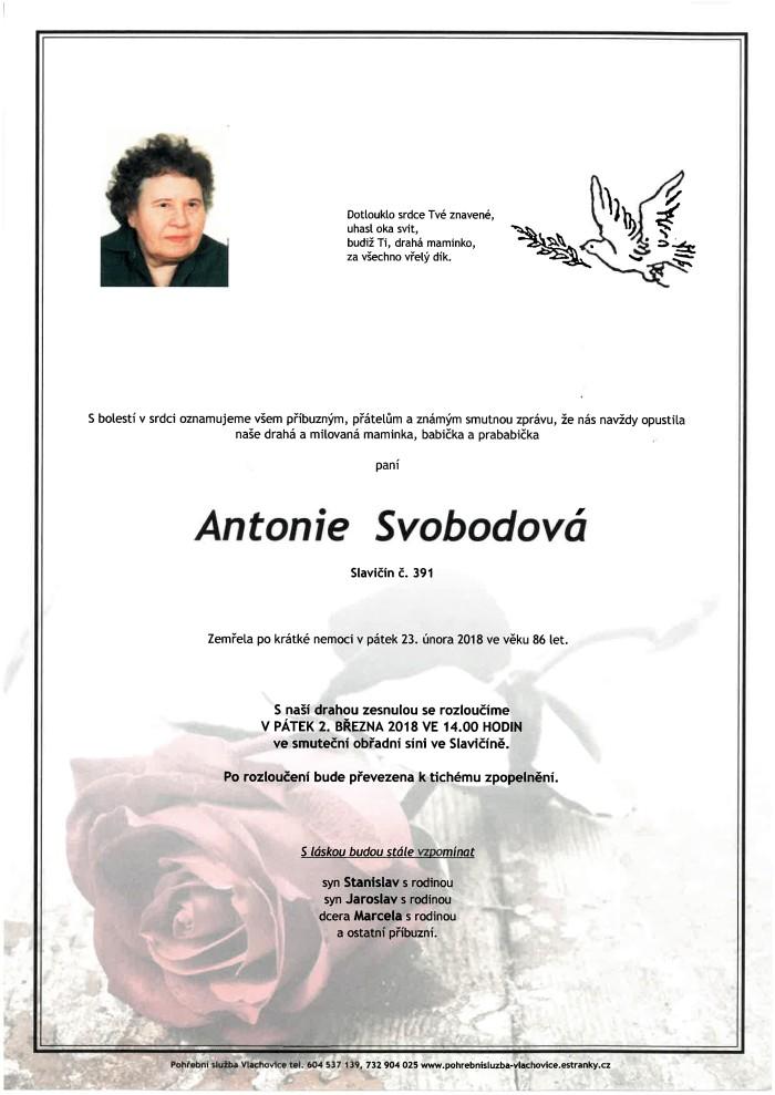 Antonie Svobodová