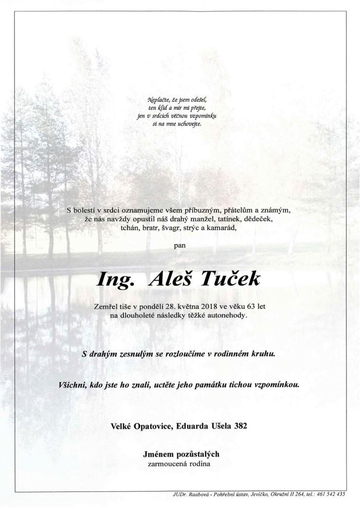Ing. Aleš Tuček