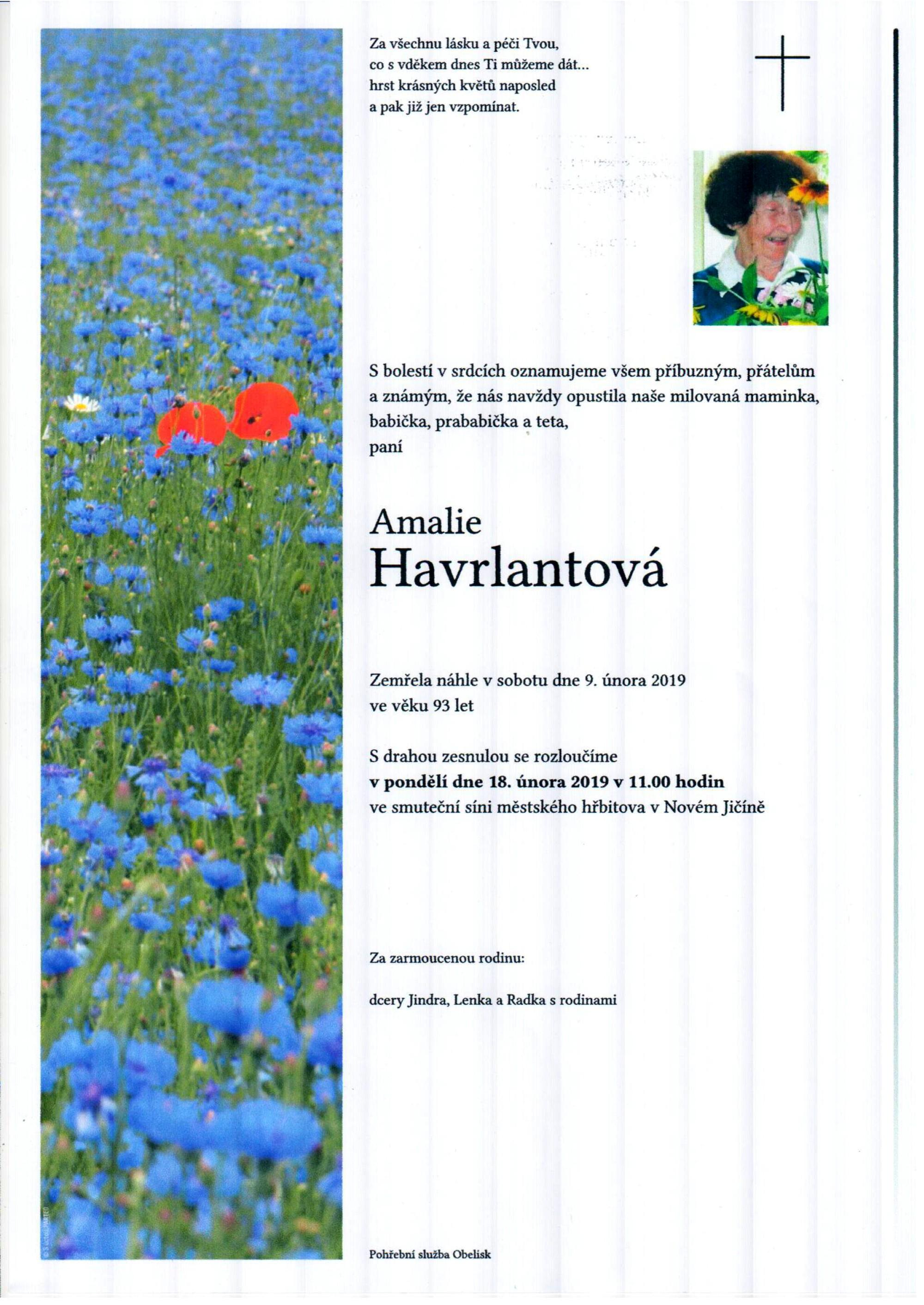 Amalie Havrlantová