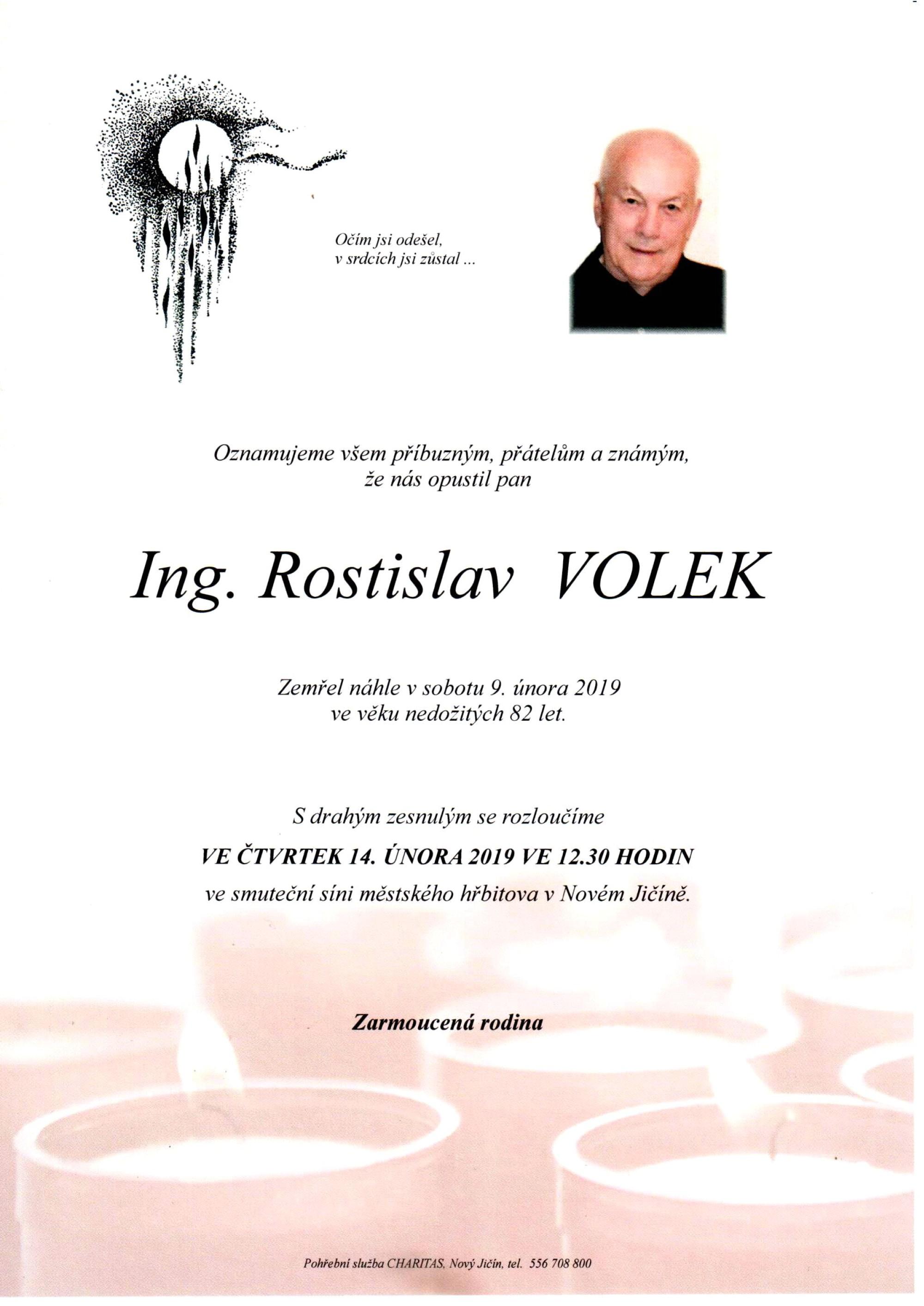 Ing. Rostislav Volek