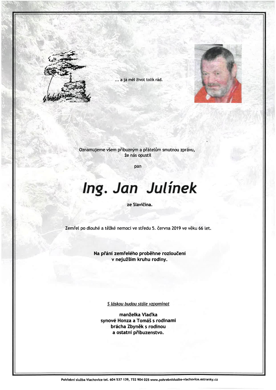 Ing. Jan Julínek