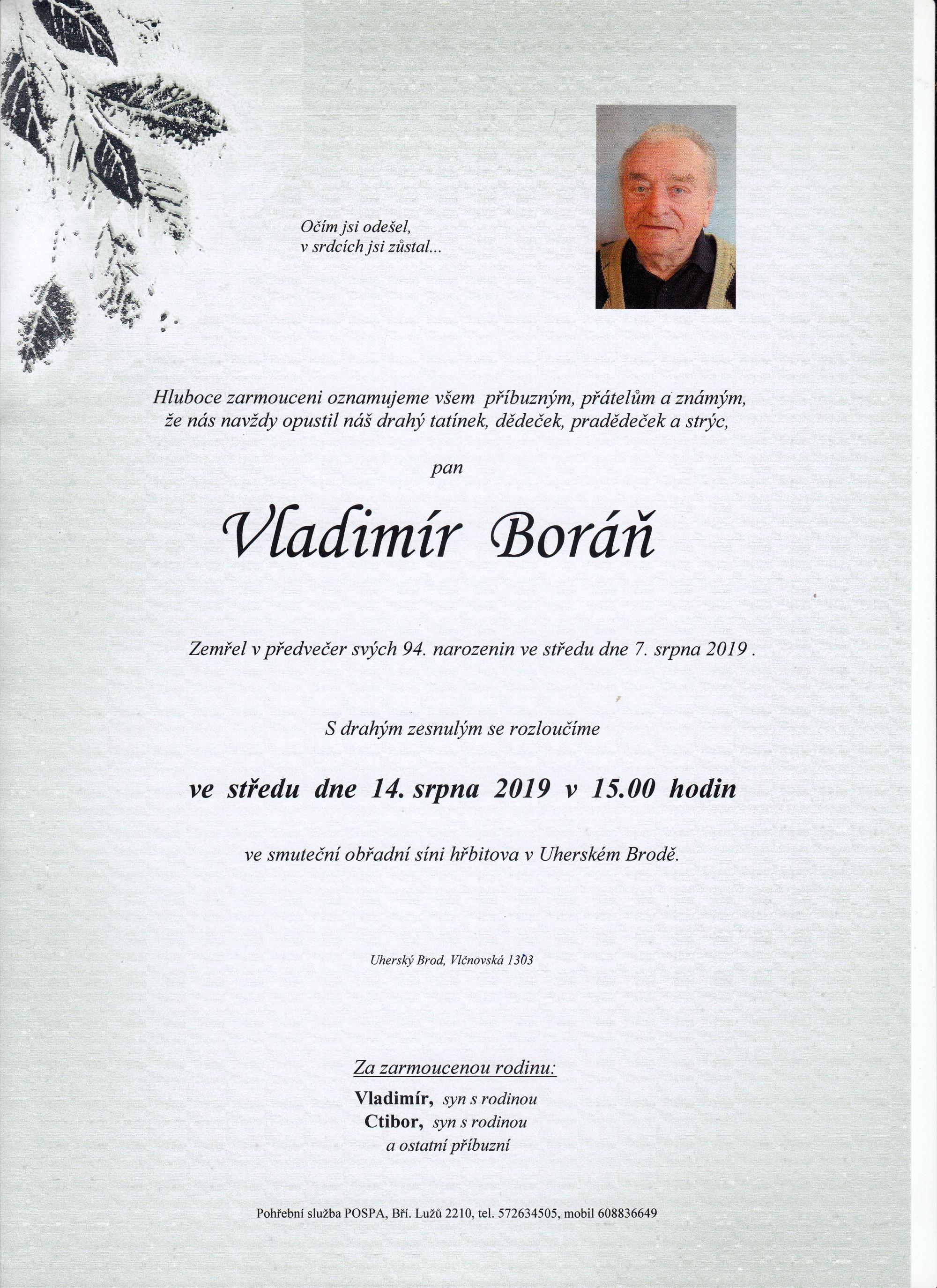 Vladimír Boráň