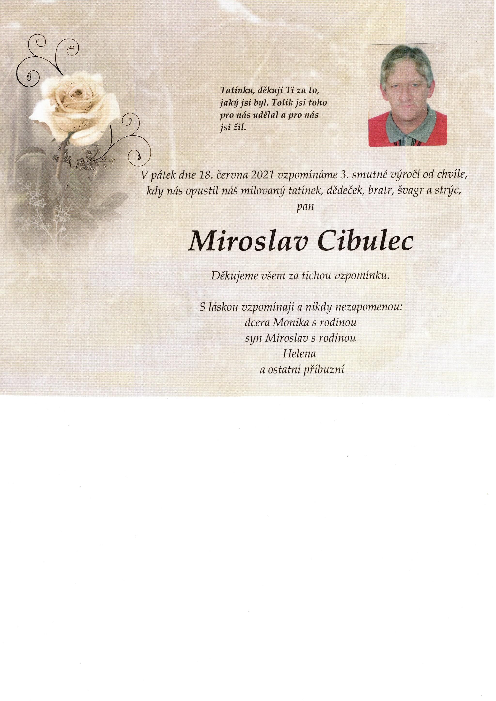 Miroslav Cibulec