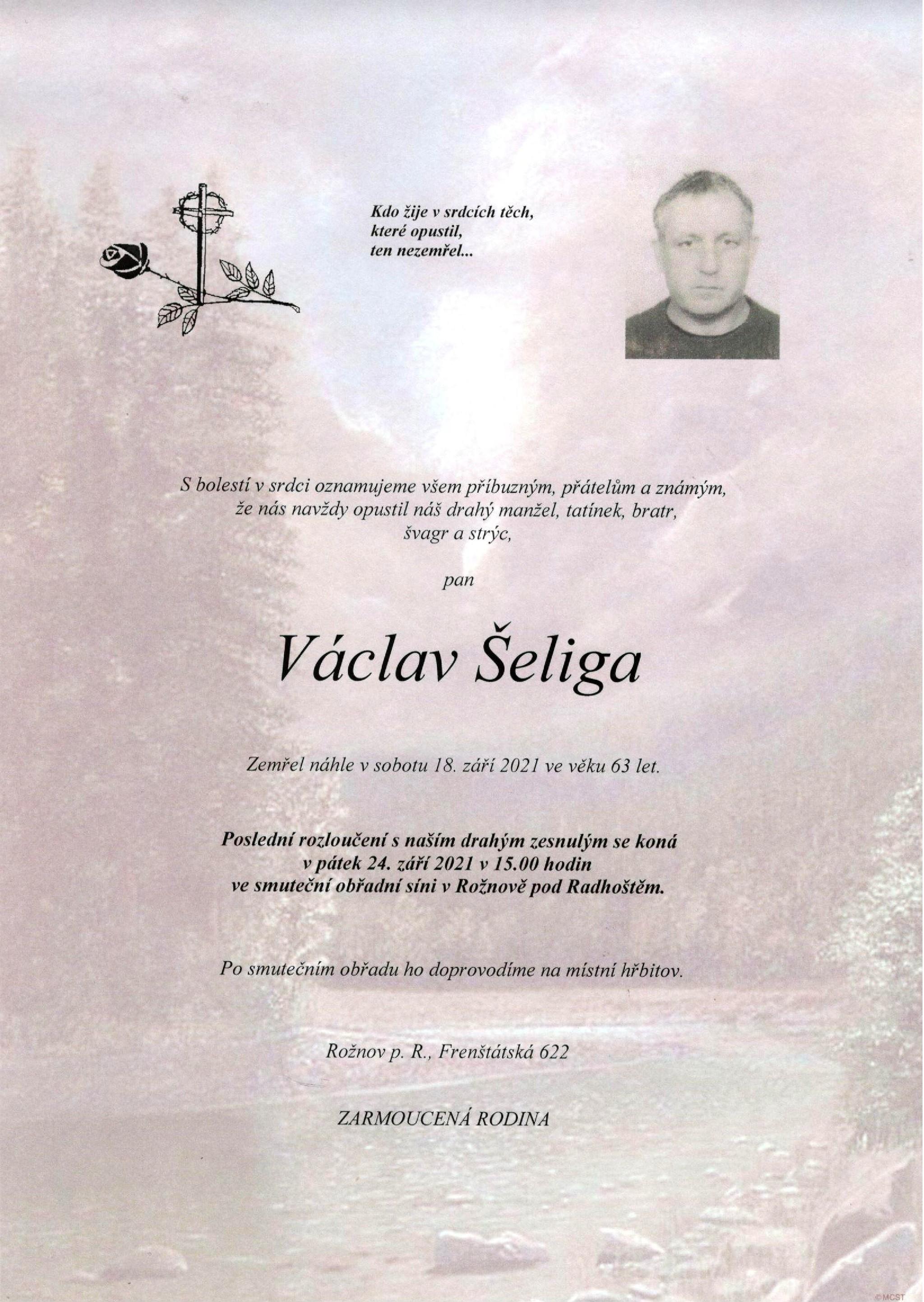 Václav Šeliga